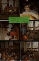ST PHILOMENA'S scrapbook  1979-1980 (2)